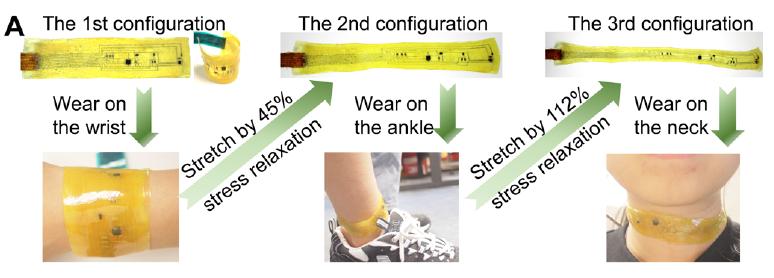 科学家研发新型多功能电子皮肤,可测心率计步