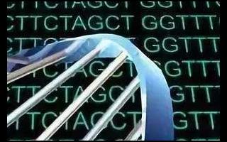 Gartner預測:標記神經形態計算和DNA存儲...