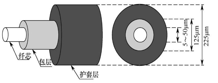 光纤的传输原理和传输特性