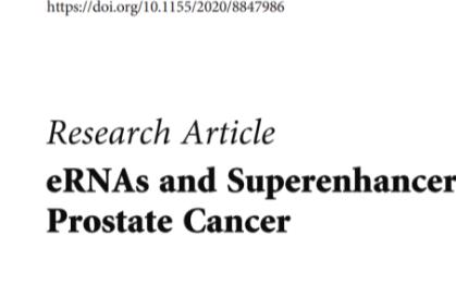 SBC ceRNA芯片的潛在轉錄調控機制和臨床應用方向