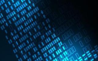 又三家IBM服務的企業一舉沖進數字化轉型先鋒榜