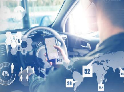 为避免白长颈鹿灭绝,环保人士安装GPS追踪器