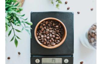 智能食物秤已广泛应用于健康机构、日常家庭、餐厅等领域