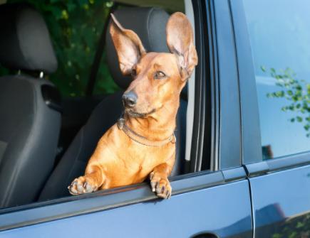 隻果激光雷達專利︰可安裝在車輛擋風玻璃後面