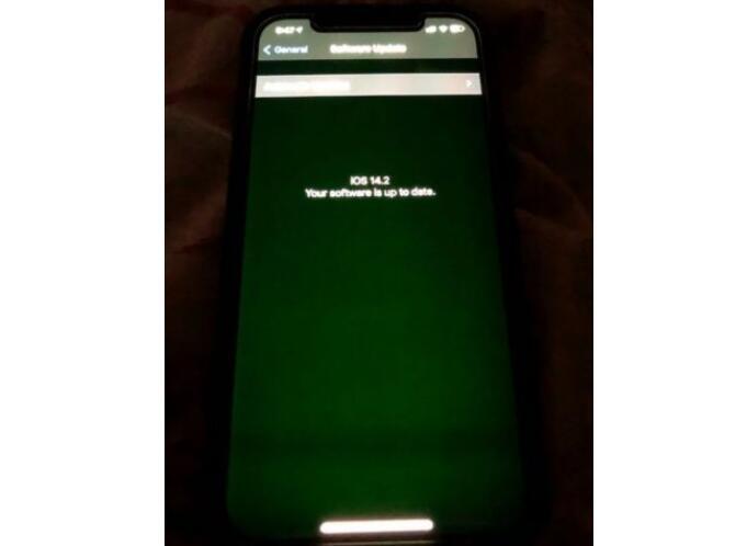 苹果官方回应:iPhone12的绿屏问题正在调查