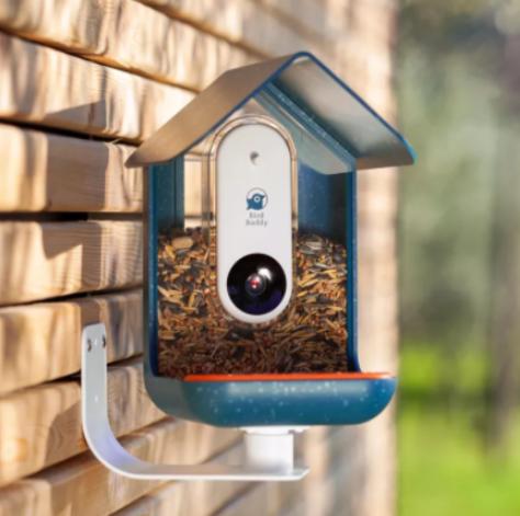 Bird Buddy智能喂鸟器:通过照片音频识别鸟类物种