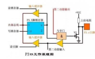 单片机上电复位后端口的状态详细概述