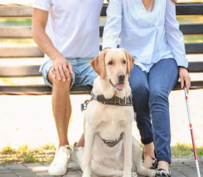 谷歌Guideline项目可帮助盲人独立完成跑步