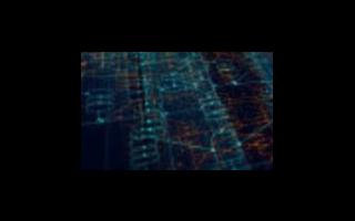 区块链是什么_未来和区块链究竟有什么关系