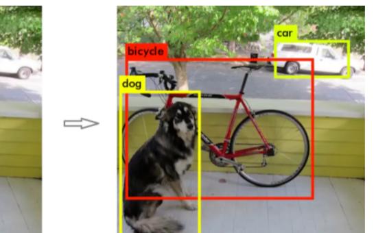 基于深度学习YOLO系列算法的图像检测