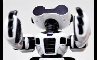 ANYmal四足机器人亮相世界互联网大会