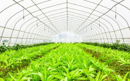 土壤水分监测仪的工作原理以及它的使用分享