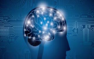 人工智能真的会和人类爆发战争吗?