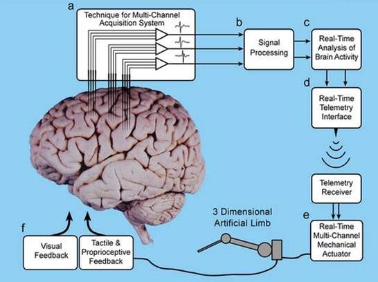 脑机接口技术离我们生活已经很近了