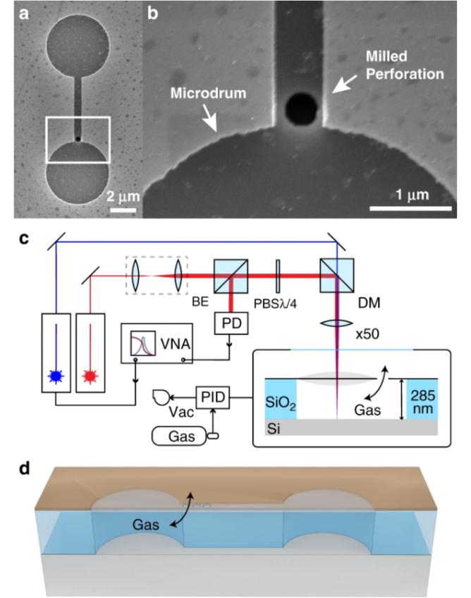 科学家通过石墨烯制成惰性气体的传感器