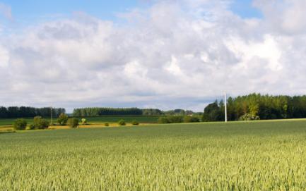 智能虫情测报系统在农业领域有着广泛的应用