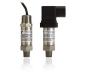 CAT-PTT0044 非易燃低压力传感器