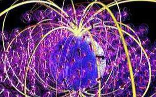 一种量子算法可用于使用量子计算机研究一类多电子量子系统