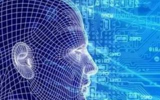 如何幫助零售行業的公司應用AI和機器學習來提高其盈利能力和可持續性