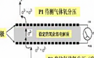 極限電流型氧化鋯氧氣傳感器SO-E2-250的特...