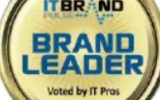 關于IT Brand Pulse閃存產品的品牌領...