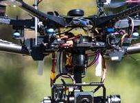 使用無人機、熱成像儀和人工智能幫助野生動物和土地的保護