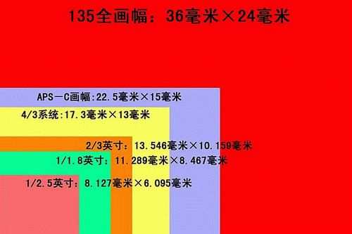2e2053e6-4699-11eb-8b86-12bb97331649.jpg