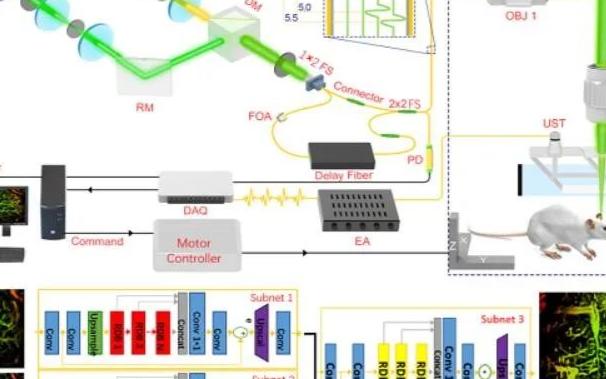 深圳先进院等提出基于卷积神经网络的低剂量光声成像方法