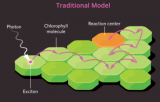 量子力学导致基因突变?