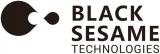 """黑芝麻智能""""华山系列芯片""""的出炉,填补了国内尚无同类产品的空白"""