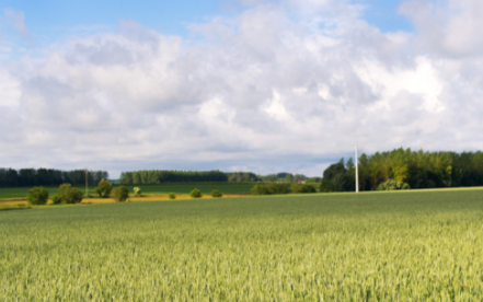 滴灌控制系統是什么,滴灌控制系統的作用是什么