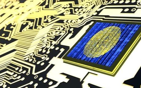上海嘉定区委书记来到上海智能传感器产业园开展调研