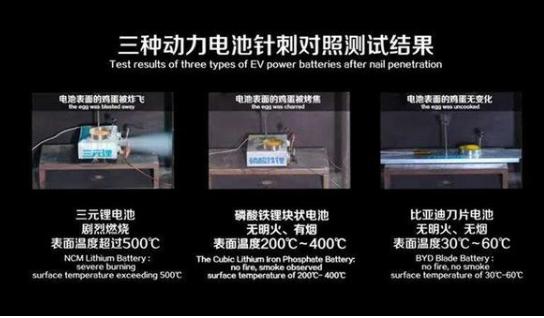王传福:应将动力电池的针刺试验纳入强制标准
