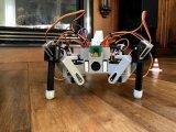 用树莓派做蜘蛛机器人