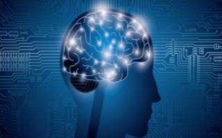 成为机器学习工程师需要了解关键性问题