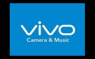 国产接过创新接力棒,vivo提供最新例证