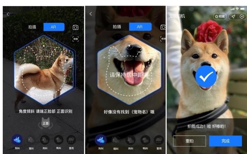 杭州已经正式上线宠物鼻纹身份证,有望成为国内首个数字养宠城市
