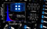 """九州大学打破瓶颈设计出长寿命""""纯蓝光""""OLED"""