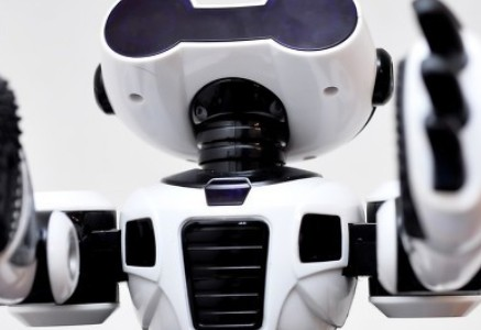 全球首位公民机器人索菲娅即将量产