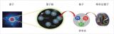 电子离子对撞机:核子结构的超级显微镜