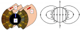 """什么样的磁铁才能成为加速器的""""躯干""""?"""