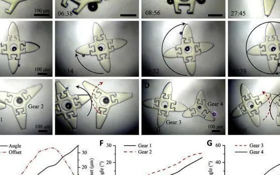 沈阳自动化所微纳米课题组在微型机器人研究领域取得新突破