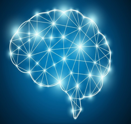 马斯克:今年将初步进行脑机接口人体试验