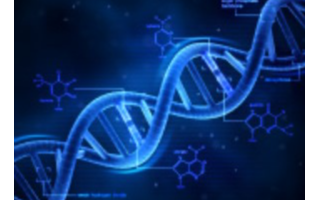 """基因""""剪刀""""新功能 提供更多机会"""
