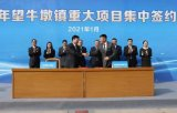 广合科技智能自动化数控加工项目签约东莞
