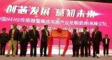 """蚌埠市正打造""""中國智能傳感谷"""""""