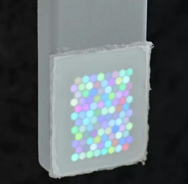 科学家研发低像素紫外屏观察动物的视觉感知