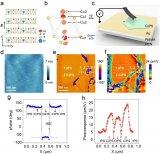 范德华铁电材料中的各向异性离子迁移和导电现象