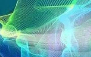 通过纳米技术,将菠菜转变为能检测爆炸物质的传感器