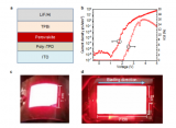 教授研究组在大面积制备钙钛矿LED领域取得重要进展